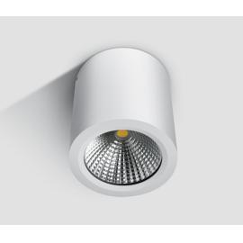 Svietidlo stropné prisadené: 100-240V - LED1x10W - IP54