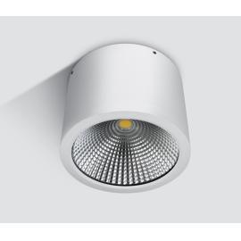 Svietidlo stropné prisadené: 100-240V - LED1x25W - IP54